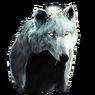 Replica Alpha's Howl Sinner Tricorne