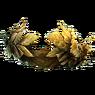 황금 화관